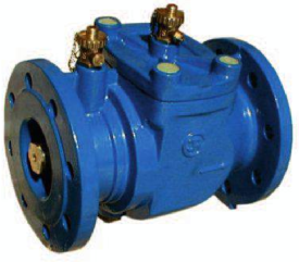 Antipollution check valve